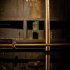 www.arthena.net_Chartreuse -183